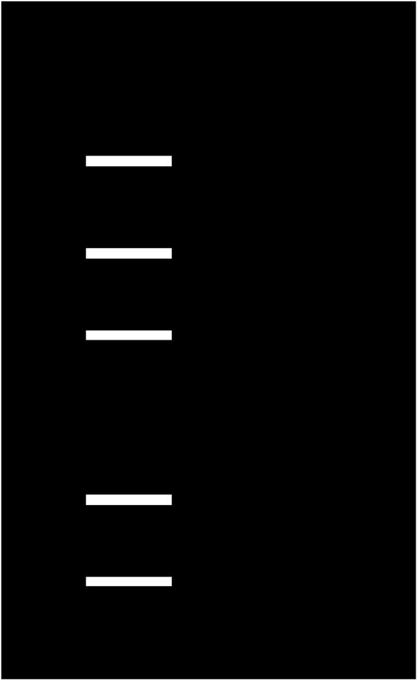 o2o系统功能介绍-2.png